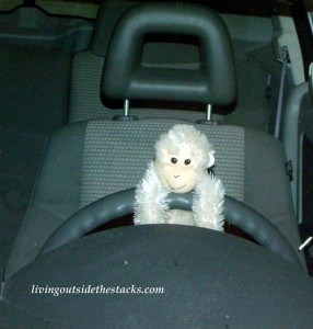 Driving Monkey