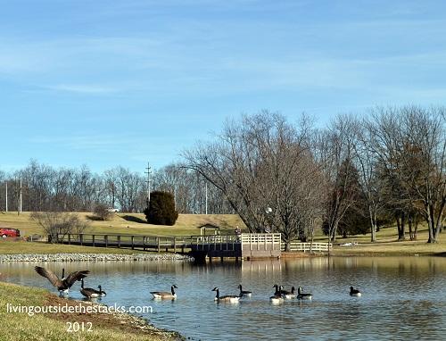 Cape Girardeau Park