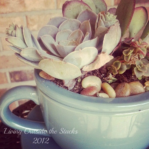 Planter Side View