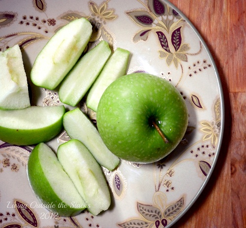 Sweet {Apple Slices}
