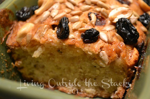 Banana Bread with Cranberry Trail Mix Crust {Living Outside the Stacks}
