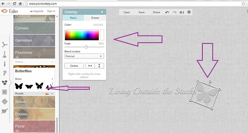 How to Create a Watermark Using PicMonkey {Living Outside the Stacks}