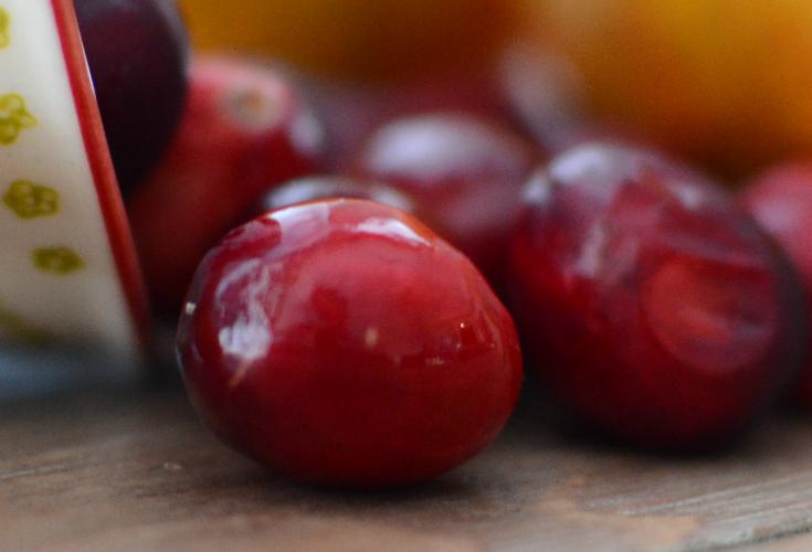 Orange Cranberry [walnut] Bread {living outside the stacks}