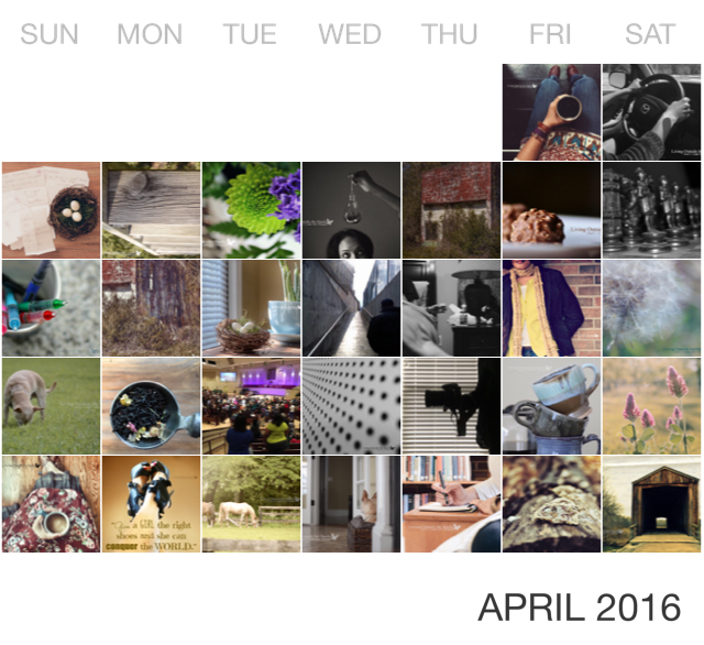 April in Pictures {living outside the stacks}