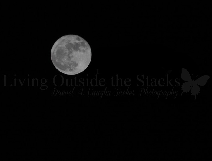 Supermoon {living outside the stacks} #livingoutsidethestacks #supermoon #TeamNikon #NikonD7100
