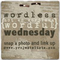 Wordless Wordful Wednesday