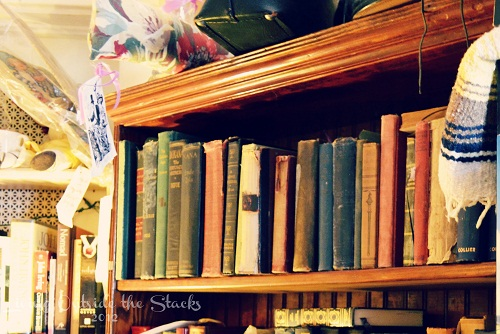 Annie Laurie's Antiques {Living Outside the Stacks}