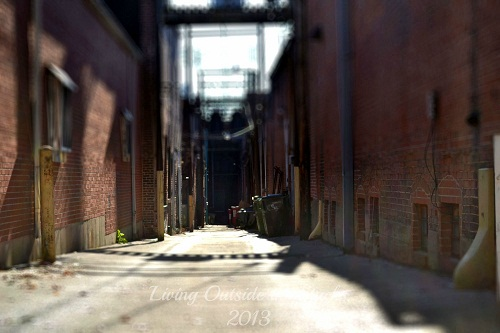Alley {Living Outside the Stacks}