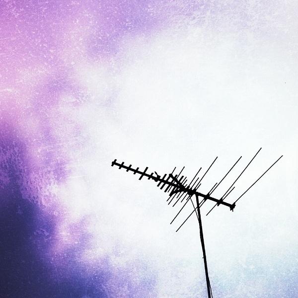 Antenna {Living Outside the Stacks}