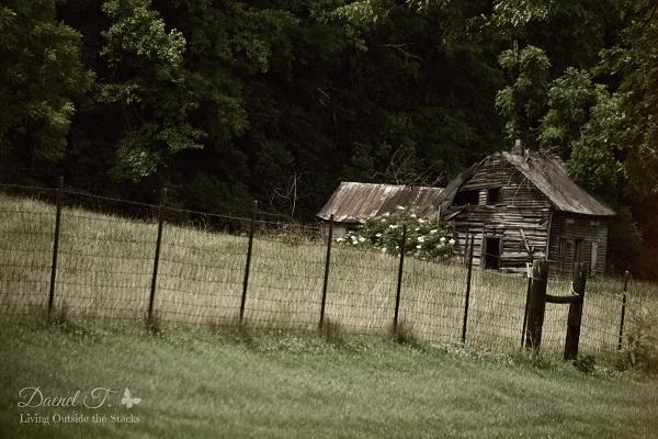 Blogtober: My Hobby {Living Outside the Stacks}