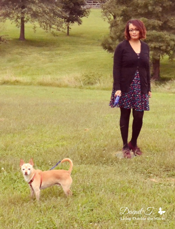Black Cardigan and Horse Print Dress {Living Outside the Stacks}