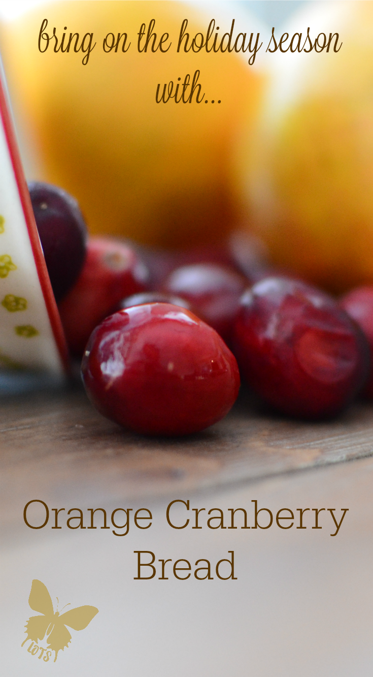 Orange Cranberry [walnut] Bread {living outside the stacks}