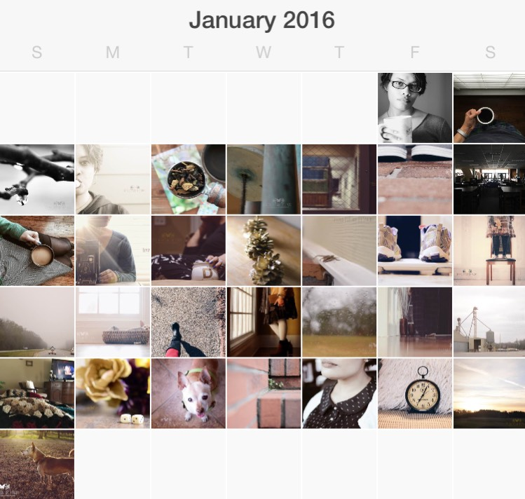 January in Pictures {living outside the stacks}
