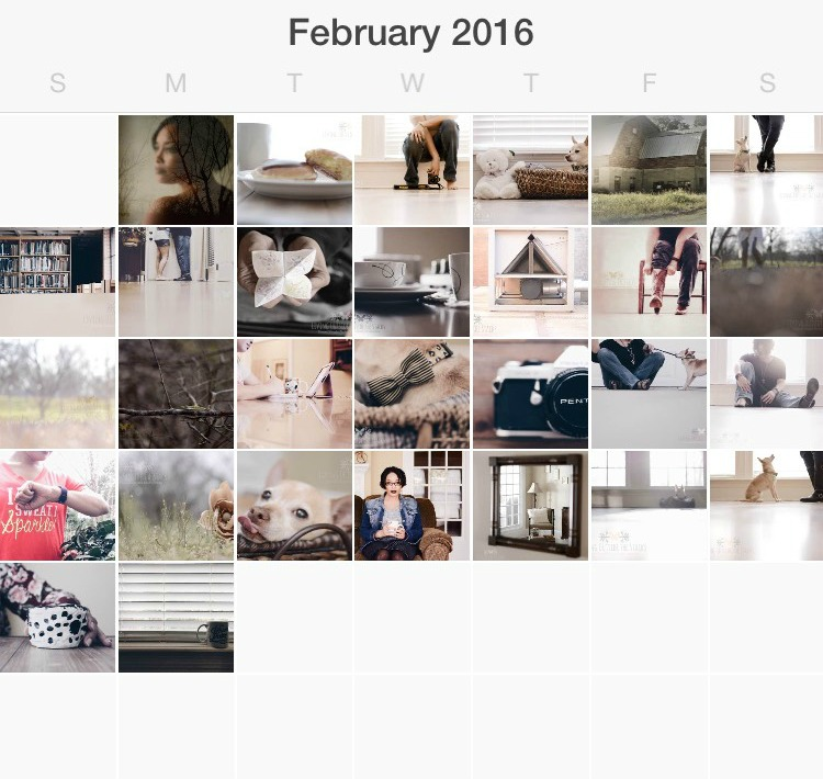 February in Pictures {living outside the stacks}