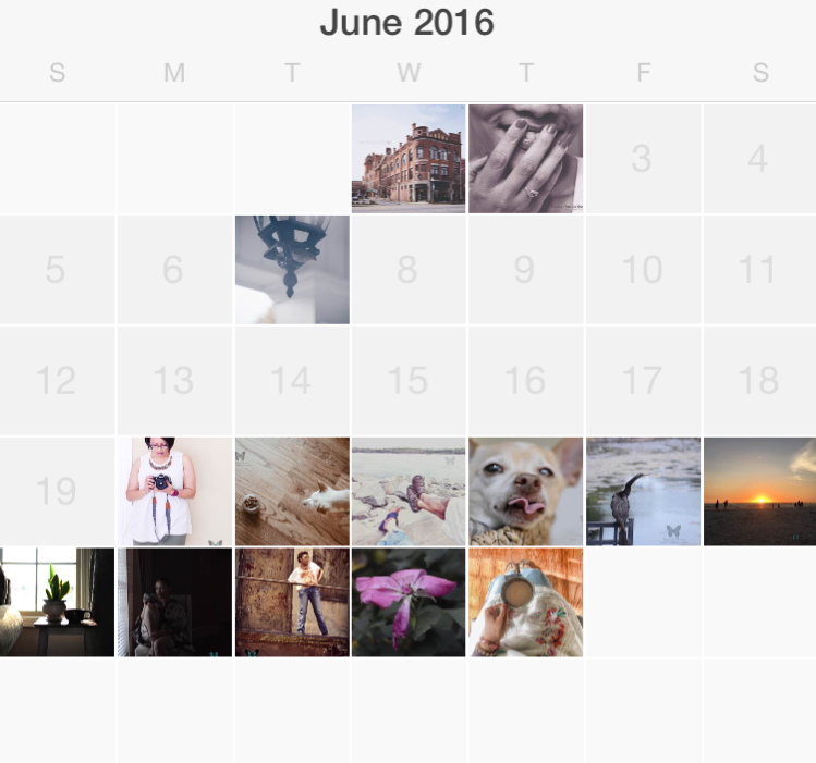 June in Pictures {living outside the stacks}