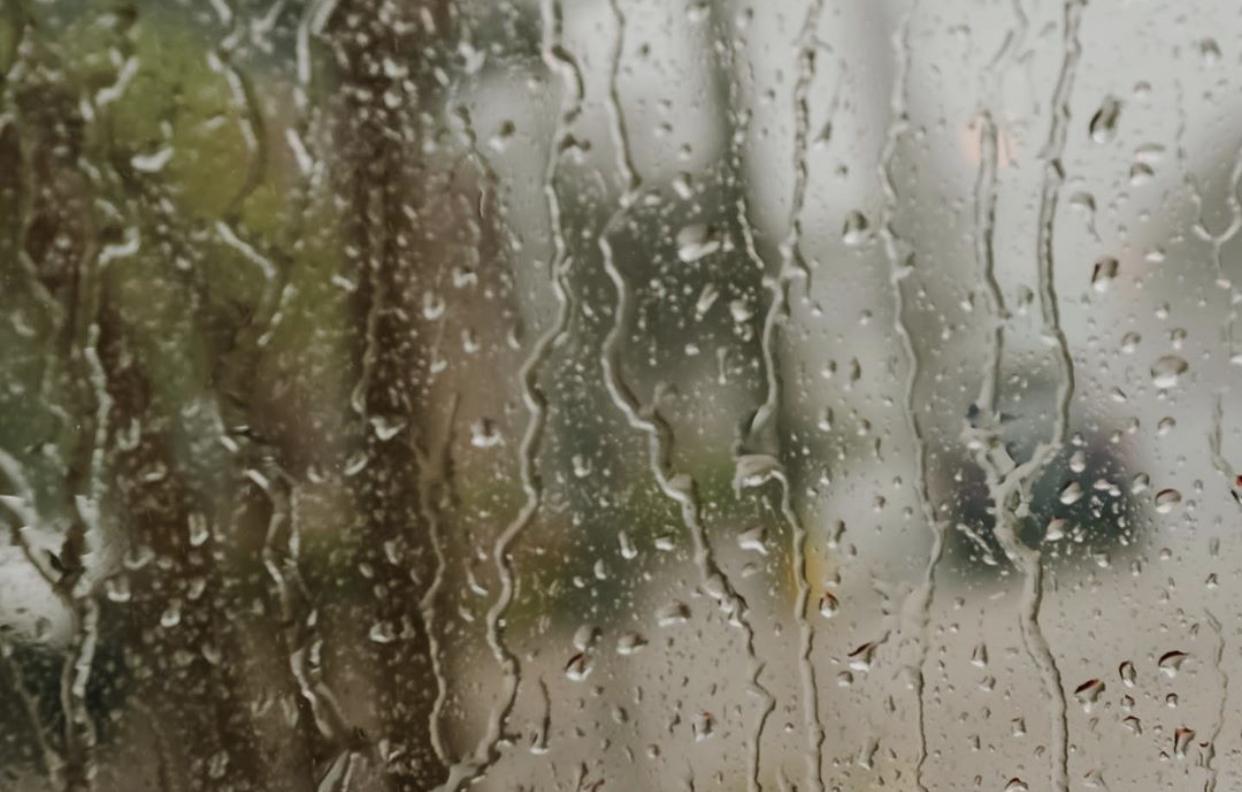 Rain {living outside the stacks}